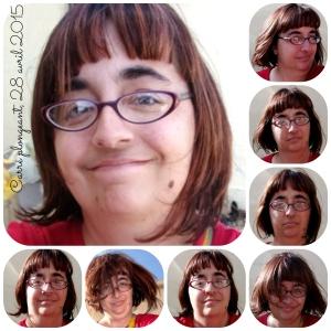 PicMonkey Collagecarrepolgeantavril2015